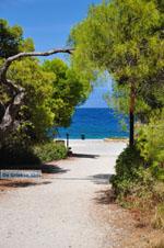 Xylokastro | Corinthia Peloponnese | Greece  7 - Photo GreeceGuide.co.uk