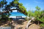 Xylokastro | Corinthia Peloponnese | Greece  14 - Photo GreeceGuide.co.uk