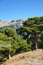 Mountain villages Ziria | Corinthia Peloponnese | Greece  10 - Photo GreeceGuide.co.uk