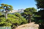 Mountain villages Ziria | Corinthia Peloponnese | Greece  11 - Photo GreeceGuide.co.uk