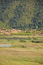 Stymfalia | Corinthia Peloponnese | Greece  12 - Photo GreeceGuide.co.uk