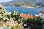 Poros | Saronic Gulf Islands | Greece  Photo 146 - Photo GreeceGuide.co.uk