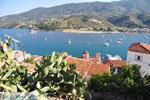 Poros | Saronic Gulf Islands | Greece  Photo 148 - Photo GreeceGuide.co.uk
