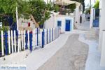 Poros | Saronic Gulf Islands | Greece  Photo 156 - Photo GreeceGuide.co.uk