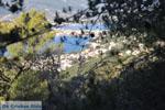 Poros | Saronic Gulf Islands | Greece  Photo 193 - Photo GreeceGuide.co.uk