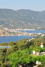 Poros | Saronic Gulf Islands | Greece  Photo 196 - Photo GreeceGuide.co.uk