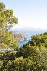 Poros   Saronic Gulf Islands   Greece  Photo 202 - Photo GreeceGuide.co.uk
