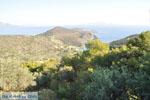 Poros   Saronic Gulf Islands   Greece  Photo 203 - Photo GreeceGuide.co.uk