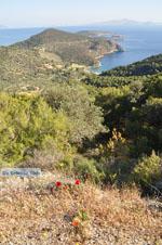 Poros | Saronic Gulf Islands | Greece  Photo 204 - Photo GreeceGuide.co.uk