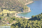 Vagionia Poros | Saronic Gulf Islands | Greece  Photo 205 - Photo GreeceGuide.co.uk