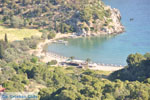 Vagionia Poros | Saronic Gulf Islands | Greece  Photo 206 - Photo GreeceGuide.co.uk