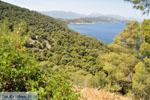 Poros | Saronic Gulf Islands | Greece  Photo 264 - Photo GreeceGuide.co.uk