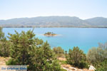 Poros | Saronic Gulf Islands | Greece  Photo 269 - Photo GreeceGuide.co.uk
