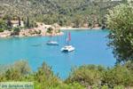 Poros | Saronic Gulf Islands | Greece  Photo 276 - Photo GreeceGuide.co.uk