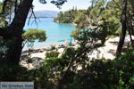 Limanaki Agapis Poros | Saronic Gulf Islands | Greece  Photo 291 - Photo GreeceGuide.co.uk