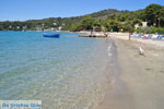Neorio Poros | Saronic Gulf Islands | Greece  Photo 292 - Photo GreeceGuide.co.uk