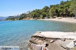 Neorio Poros | Saronic Gulf Islands | Greece  Photo 294 - Photo GreeceGuide.co.uk