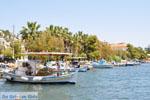 Neorio Poros | Saronic Gulf Islands | Greece  Photo 298 - Photo GreeceGuide.co.uk