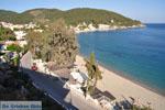 Askeli Poros | Saronic Gulf Islands | Greece  Photo 309 - Photo GreeceGuide.co.uk