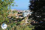 Embonas Rhodes - Island of Rhodes Dodecanese - Photo 8 - Photo GreeceGuide.co.uk