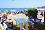 Faliraki Rhodes - Island of Rhodes Dodecanese - Photo 199 - Photo GreeceGuide.co.uk