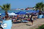 Faliraki Rhodes - Island of Rhodes Dodecanese - Photo 220 - Photo GreeceGuide.co.uk