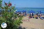 Faliraki Rhodes - Island of Rhodes Dodecanese - Photo 221 - Photo GreeceGuide.co.uk