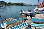 Faliraki Rhodes - Island of Rhodes Dodecanese - Photo 241 - Photo GreeceGuide.co.uk