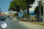 Ialyssos Rhodes - Trianda Rhodes - Island of Rhodes Dodecanese - Photo 423 - Photo GreeceGuide.co.uk