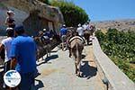 Lindos Rhodes - Island of Rhodes Dodecanese - Photo 953 - Photo GreeceGuide.co.uk