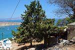 Lindos Rhodes - Island of Rhodes Dodecanese - Photo 974 - Photo GreeceGuide.co.uk