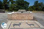Profitis Ilias Rhodes - Island of Rhodes Dodecanese - Photo 1198 - Photo GreeceGuide.co.uk