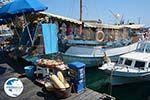 Rhodes town - Rhodes - Island of Rhodes Dodecanese - Photo 1269 - Photo GreeceGuide.co.uk