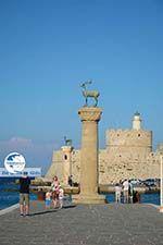 Rhodes town - Rhodes - Island of Rhodes Dodecanese - Photo 1519 - Photo GreeceGuide.co.uk