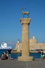 Rhodes town - Rhodes - Island of Rhodes Dodecanese - Photo 1523 - Photo GreeceGuide.co.uk