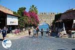 Rhodes town - Rhodes - Island of Rhodes Dodecanese - Photo 1755 - Photo GreeceGuide.co.uk