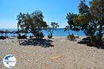 The beaches Kampos Samos and Votsalakia Samos | Greece Photo 18 - Photo GreeceGuide.co.uk