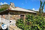Koumaradei Samos | Greece | Photo 17 - Photo GreeceGuide.co.uk