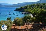 Mourtia Samos | Greece | Photo 3 - Photo GreeceGuide.co.uk