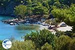Mourtia Samos   Greece   Photo 4 - Photo GreeceGuide.co.uk