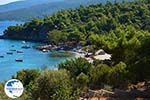 Mourtia Samos | Greece | Photo 5 - Photo GreeceGuide.co.uk