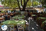 Mytilinioi Samos | Greece | Photo 3 - Photo GreeceGuide.co.uk
