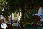 Mytilinioi Samos | Greece | Photo 6 - Photo GreeceGuide.co.uk