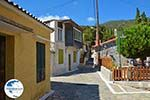 Pandrosso Samos | Greece | Photo 27 - Photo GreeceGuide.co.uk