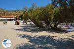 Psili Ammos Mykali Samos | Greece | Photo 2 - Photo GreeceGuide.co.uk