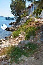Psili Ammos Mykali Samos | Greece | Photo 10 - Photo GreeceGuide.co.uk