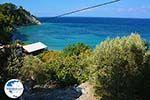 beach Tsambou Kokkari Samos | Greece Photo 0012 - Photo GreeceGuide.co.uk