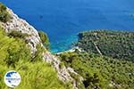 Bay Mourtia Samos | Greece | Photo 9 - Photo GreeceGuide.co.uk