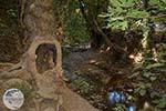 Potami - Samos Island Foto 10 - Photo GreeceGuide.co.uk