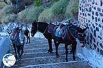Fira Santorini | Cyclades Greece  | Photo 0065 - Photo GreeceGuide.co.uk